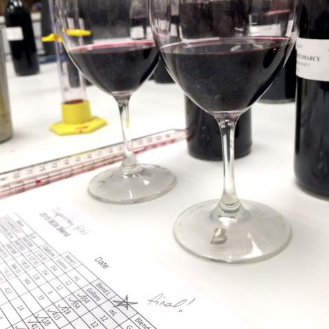 Blending notes with wines on table